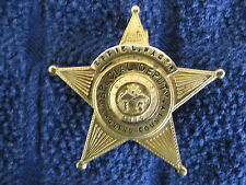 """Great Special Deputy Badge From Mahoning County Ohio to Effie L. Rager 1 3/4"""""""