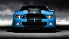 """10"""" VINYL RALLY STRIPES RACING STRIPE KIT HOOD TRUNK ROOF For FORD MUSTANG"""