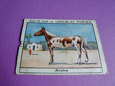 CHEVAUX ARABE CHROMO CHOCOLAT PUPIER JOLIES IMAGES 1930