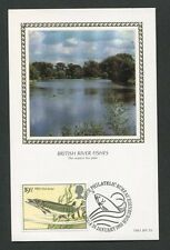 GB UK MK 1983 FISCHE HECHT ANGELN FISHING FISH CARTE MAXIMUM CARD MC CM d8268