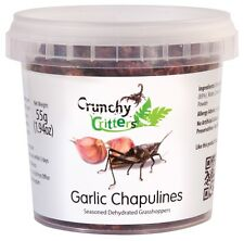 Edible Insects Edible Bugs Bush Tucker Garlic Chapulines 55g Crunchy Critters
