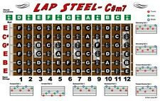 Lap Steel Guitar Fretboard Wall Chart Poster Tuning - C#m7 Notes Chords Rolls