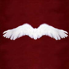 White Feather Angel costume Wings Large Photo Props Men Adult Halloween Fairy