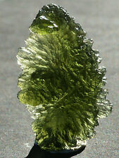 MOLDAVITE Tektite Hedgehog Besednice Czech Republic 33.3ct vltavine 35x21x11mm