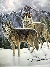 A Pair of Wolves in the Night 8 x 10 Poster Print