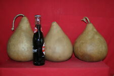 "3  -  7""  MARTIN GOURDS  (DRIED AND CLEANED)"