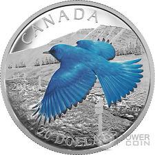 MOUNTAIN BLUEBIRD The Migratory Birds Convention Silver Coin 20$ Canada 2016