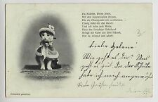 POSTCARD - cat dressed in cape & hat, with poem, undivided back