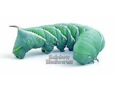 12 Live Hornworms Goliath Worms Free Shipping!