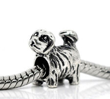 Yorkie Puppy Dog Yorkshire Terrier Animal Pet Bead for Silver Charm Bracelet