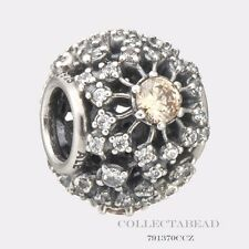 Authentic Pandora Sterling Silver Inner Radiance Bead 791370CCZ *SPECIAL*