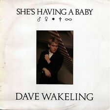 "Dave Wakeling   ‎– She's Having A Baby 12"" English Beat Solo"