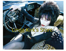 Pin Up Girl PRINT Elvira Mistress Of The Dark In Car Sexy Leopard Upholstery