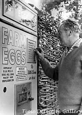Vending Machine That Dispenses Fresh Eggs - 1960s - Vintage Photo Print