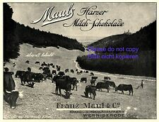 Chocolate Factory Maul Wernigerode 1920 German advertising cows cocoa Germany +
