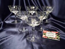 Floral Etched Champagne Wine Glass goblet set of six