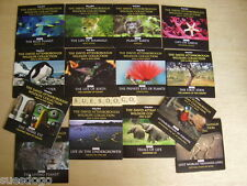 DAVID ATTENBOROUGH WILDLIFE COLLECTION - COMPLETE SERIES 2 ON 14 PROMO DVDS