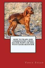 How to Train and Raise a Irish Setter Puppy or Dog with Good Behavior by...