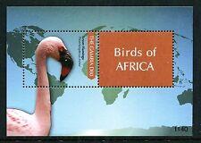 Gambia 3398 MNH Bird: Lesser Flamingo-Phoeniconaias minor, 2011. x18935