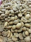 100% Kopi Luwak Arabica Coffee - 1 lb with Cert of Authenticity Green or Roasted