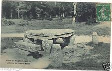 77 - cpa - Forêt de Fontainebleau - La table du Grand Maître (H9863)