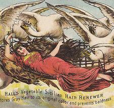 Elise & the Wild Swan 1882 Halls Vegetable Hair Renewer Whisker Advertising Card