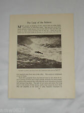 VINTAGE PLATE PRINT THE LEAP OF THE SALMON BUILTH WELLS ALASKA ART FISHING CABIN