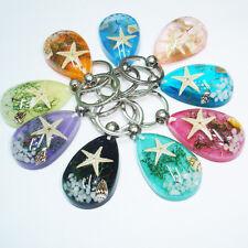 Hot Sale Real Crab Starfish Shell Lucite Keyring Keychain Sea Marine Taxidermy