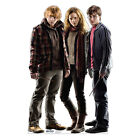 HARRY POTTER HERMIONE AND RON Lifesize CARDBOARD CUTOUT Standup Standee Poster
