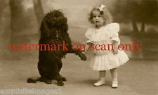 Antique Sepia Photo~Black Poodle Dog~Dogs~Girl in Ruffled Dress~ NEW Note Cards