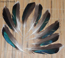 50pcs natural Wild duck feathers 4-6 inch /10-15cm / #13
