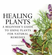 Healing Plants: A Beginner's Guide to Using Plants for Natural Remedies