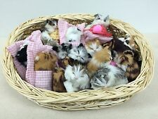 Cat Lovers 24 Kittens Basket Gift Item Christmas Collectible furry stuffed fur