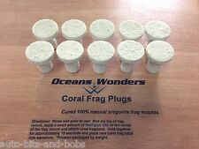 10x Frag Plugs Cured Caribsea Reef Sand Best Quality SPS LPS Frag Plugs Around