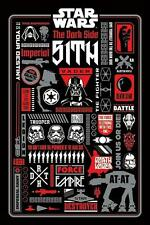Star Wars : Dark Side Icongraphic - Maxi Poster 61cmx91.5cm (new sealed)