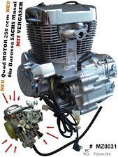 Quad MOTOR 250 ccm CPI XS 250 Barossa 250 MIT VERGASER