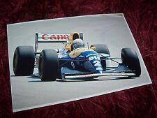 Photo / Photograph  Alain Prost  WILLIAMS Renault FW15B GP d'Afrique du sud //