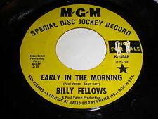 Billy Fellows: Early In The Morning / Stained Glass Window 45