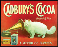 Cadburys Cocoa Absolutely Pure Cat - Vintage Art Print Poster - A1 A2 A3 A4 A5
