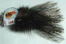 12 x Plumes Coq Leon / Pardo Rinon aconchado mosca fliegen feather fly tying