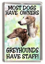"""Greyhound Fridge Magnet """"Most Dogs Have Owners Greyhounds Have Staff!"""""""