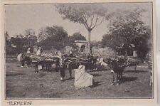 1896  --  LE MARCHE AU BOIS A TLEMCEN   ALGERIE   3H470