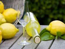 Manuale Ebook - Liquori fatti in casa con diritti di rivendita