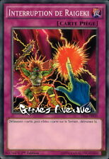 Yu-Gi-Oh ! Interruption de Raigeki YS16-FR035 (YS16-EN035) - VF/Commune