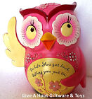 """Pink Inspirational Money Savings Box Coin Piggy Bank Ornament """"Gifted Series"""""""