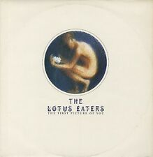 Lotus Eaters The First Picture Of You UK 12""