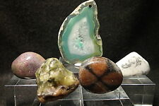 5 pieces Garnet,Agate,Andalusite,Howlite,Bloodstone natural crystal starter set