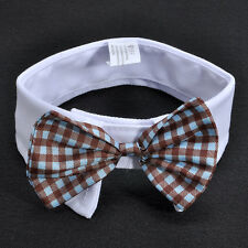 Cute Adorable Dog Cat Pet Puppy Kitten Toy Bow Tie Necktie Collar Clothes New FS