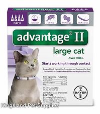 Advantage II for large Cats (over 9 lbs, 4 Month Supply) USA EPA APPROVED