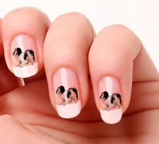 20 Nail Art Decals Transfers Stickers #570 Japanese Chin Dog